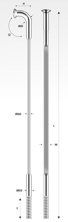 P19-PSR X-TRA2